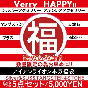 福袋/メンズ/シルバーアクセサリー/タングステン/IRONLION/五千円本気福袋/シルバー、ステン、レザーなどの詰め合わせ!!数量限定です。 【fkbr-m】