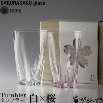 100%佐久玻璃不倒翁不倒翁) 紅色和白色雙櫻花櫻花玻璃的緣故兩大杯啤酒,啤酒杯子