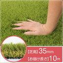【人工芝】 芝丈:35mm 長さ:10m 幅:1m C型 固定ピン付(16本)