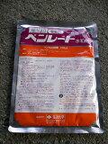 ベンレート 水和剤 100g【大袋】