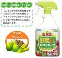 化学殺虫剤を使わない殺虫・殺菌剤「カダンセーフ 徳用900ml」