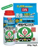 オルトランDX粒剤200g【散布ボトル入】