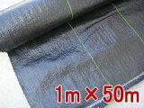 防草シート(草よけ) 1m×50m 抗菌剤入り