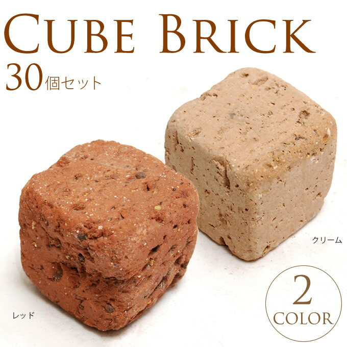 キューブレンガ W5×L5×H5cm 30個セット /レンガ 花壇 ブロック/レンガブロッ…...:gardenyouhin:10001153