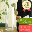 RoomClip商品情報 - ガラス花瓶 EUROグラス 直径19×高さ50cm クリアー フラワーベース 大きな 北欧 ヨーロッパ シンプル 円柱 花器 透明 大きい 大型 おしゃれ 【送料無料】