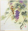 中村 凌『葡萄』色紙絵