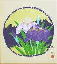 吉岡浩太郎『菖蒲』版画色紙