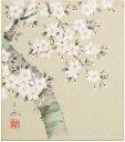 中谷文魚『桜』色紙絵