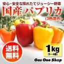 【送料無料】国産パプリカ 赤・黄・オレンジ アラカルトセット1kg A品(5〜6個・個包装・化粧箱入)【産直】【野菜】【安全】