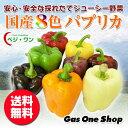 ベジ・ワン 国産パプリカ 8色セット(赤・黄・オレンジ・紫・茶・白・緑・黒・白) 2.5kg A品(13〜15個・個包装・化粧箱入)