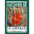 【メール便対象】ショウワノート ジャポニカ学習帳 じゆうちょう (1・2年生用) JL-72