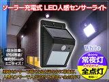 �����顼�饤�� �ʹ����� LED�����顼�饤�� ���� ���ż� LED������������饤�� �ڥۥ磻�� 1�ġ۾���������������ư���ء�|led�饤�� �����顼 ���� ������ ���� ���ȥ饤�� �����饤�� �����к� �������� ľ���� 2016May so