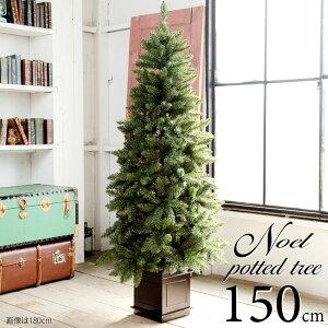 【入荷しました】ポットツリー クリスマスツリー 150cm 樅 クラシックタイプ 高級クリスマスツリー (オーナメントなし)タイプ【150cm】(クリスマスツリー おしゃれ クリスマス ツリー ヌードツリー 北欧)