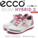【送料無料】【2015年モデル】ECCO エコー WOMEN'S GOLF BIOM HYBRID 2 【120213-57676】 レディス ゴルフシューズ