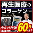 《60%OFF》 ノコギリヤシ サプリ 髪 ケラチン 亜鉛 サプリメント リブートα 《送料無料》