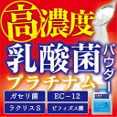 【2個セット】乳酸菌 サプリメント ガセリ菌 ビフィズス菌 オリゴ糖 EC-12 ラクリスS 有胞子性乳酸菌 サプリ 乳酸菌プラチナムパウダー 《送料無料》
