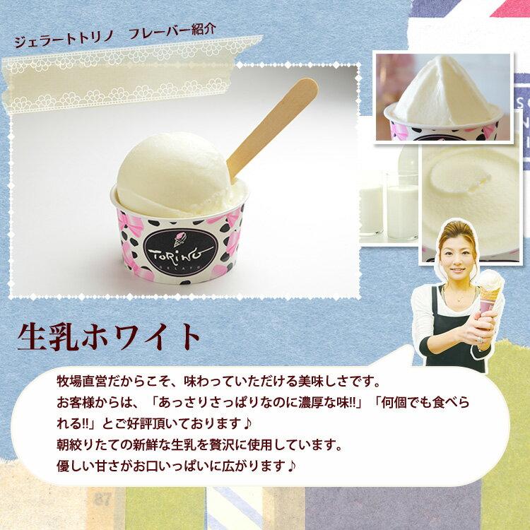 ジェラート 【ギフト】 アイス アイスクリーム...の紹介画像2