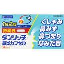 【第(2)類医薬品】「定形外送料無料」AJD ダンリッチ鼻炎カプセル 10カプセル(持続性タイプ)
