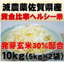 減農薬の発芽玄米配合黄金比率ヘルシー米10kg(5kg×2袋)【発芽玄米30%配合】無洗米/