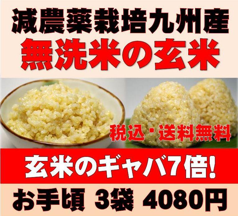 玄米(発芽玄米)玄氣4.5kg