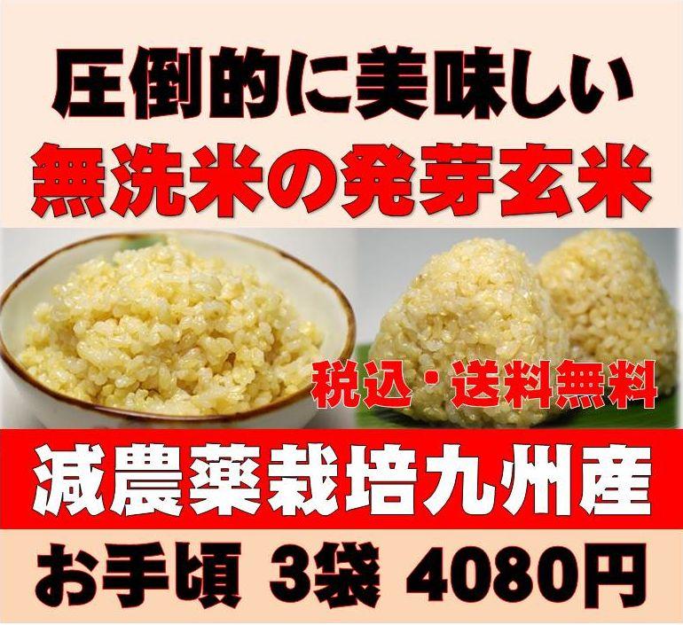 【28年新米】白米モード楽々炊飯!圧倒的に美味しい減農薬の玄氣1.5kg×3袋(4.5kg…...:genki-genmai:10000071