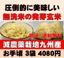 白米モード楽々炊飯!圧倒的に美味しい減農薬の玄氣1.5kg×3袋(4.5kg真空パック)【減