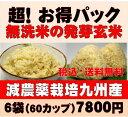 白米モード楽々炊飯!圧倒的に美味しい減農薬の玄氣1.5kg×6袋(9kg真空パック)【減農