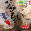【減農薬の玄氣】1.5kg×3袋(4.5kg真空パック)佐賀知事認証・減農薬・特別栽培の発芽