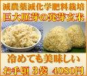 【至高の玄氣】減農薬・巨大胚芽の発芽玄米圧倒的に美味しい玄氣1.5kg×3袋(4.5kg真空