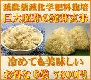 【至高の玄氣】減農薬・巨大胚芽の発芽玄米圧倒的に美味しい玄氣1.5kg×6袋(9kg真空パ