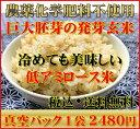 【究極の玄氣】無農薬・巨大胚芽の発芽玄米圧倒的に美味しい無農薬の玄氣1.5kg(真空