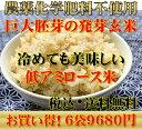 【究極の玄氣】無農薬・巨大胚芽の発芽玄米圧倒的に美味しい無農薬の玄氣1.5kg×6袋(9