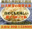 【究極の玄氣】無農薬・巨大胚芽の発芽玄米圧倒的に美味しい無農薬の玄氣1.5kg×10袋15