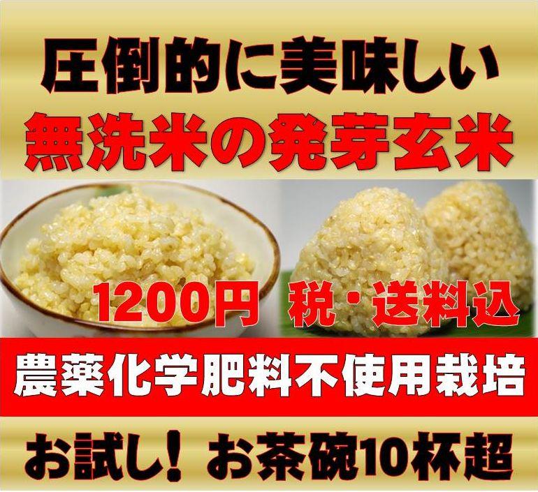【28年新米】無農薬 玄米 発芽玄米白米モード楽々炊飯!圧倒的に美味しい無農薬の玄氣900…...:genki-genmai:10000047