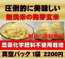 無農薬の発芽玄米白米モード楽々炊飯!圧倒的に美味しい無農薬の玄氣1.5kg真空パック
