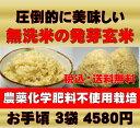 無農薬の発芽玄米白米モード楽々炊飯!圧倒的に美味しい無農薬の玄氣1.5kg×3袋(4.5kg