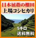 28年新米【特A評価】九州・佐賀県上場28年産コシヒカリ5kg・無洗米・送料無料