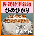 佐賀県産・籾(もみ)貯蔵ひのひかり5kg(佐賀県知事認証の減農薬・減化学肥料栽培)無洗米・送料無料
