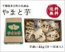 高木さん家の大和芋 4kg(10〜16本 不揃い)【送料無料】