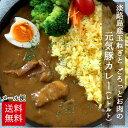 <送料無料>淡路島産玉ねぎとごろっとお肉の元気豚カレー(個食レトルト) 200g×2パ