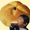 ふくらむ魔法のバターボール【レーズン】4個入り【代引不可】オーブンでみるみる膨らむ焼きたてパン【特許製法】焼きたての味と香りがご家庭で簡単に味わえます【無添加】白神酵母と厳選した素材にこだわりました【テレビ、雑誌取材多数】ZIP、ヒルナンデス、ガイアの夜明け
