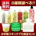 【送料無料】【ダイイチ】選べるお手軽スキンケア化粧品セット【5種類】※沖縄・一部離島は送料500円追加。