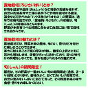 スイスチャード 80g 『無農薬・無化学肥料栽培』 埼玉県加須市 遠藤農園産