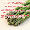埼玉県産彩玉梨5L/10玉〜4L/12玉(220_20梨)