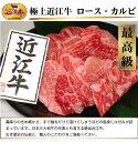 [贈答用][新鮮!厳選☆産地直送]【日本三大和牛】最高級の極上近江牛肉質最高A4〜A5等級