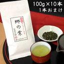 【送料無料】島田産あらづくり煎茶郷の葉100g1ケース(10本入)【お茶/煎茶/日本茶】【02P01Oct16】