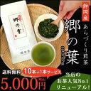 【送料無料】静岡産 あらづくり煎茶郷の葉100g1ケース(10本入)【お茶/煎茶/日本茶】