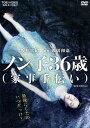 【中古】ノン子36歳(家事手伝い)/坂井真紀DVD/邦画セクシー