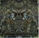 Omnibus - 【中古】Resonance Moods/オムニバス