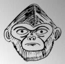 【中古】タリホー(初回限定盤)(DVD付)/ザ・クロマニヨンズCDシングル/邦楽